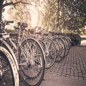 Bicicletta in Condominio