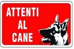 Il cane in condominio diritti e doveri
