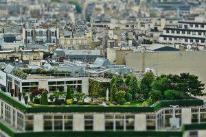 """Il Tetto Green - Battezzato dagli inglesi """"Rooftop Garden"""""""